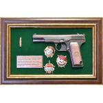 Пистолет ТТ с Наградами СССР